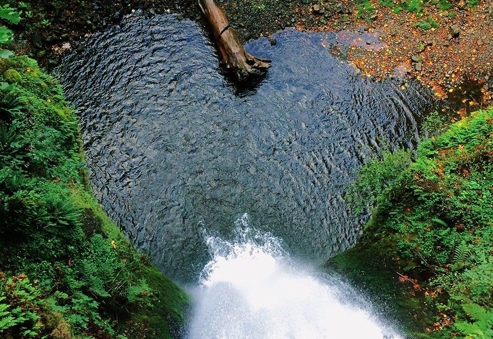 Sécheresse : le Conseil départemental innove pour optimiser les apports en eau des cultures d'été des agriculteurs haut-garonnais
