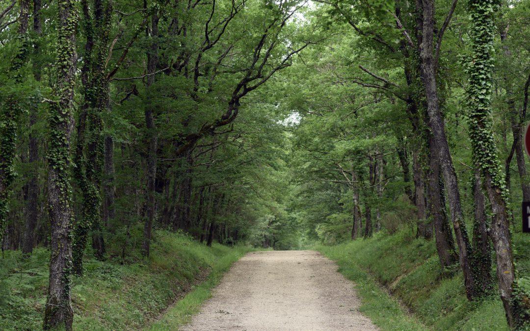 Dès le 13 mai, réouverture des espaces naturels en Haute-Garonne
